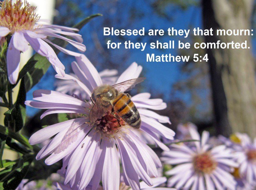 Bee and mourning verse